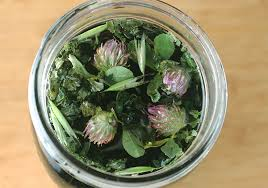 herbal tea.jpg
