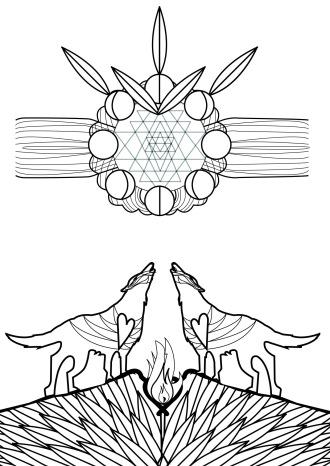 זאבות